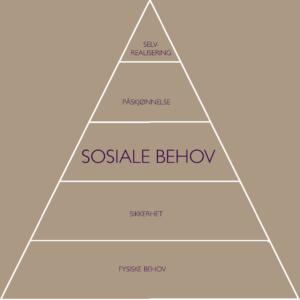Abraham Maslows behovspyramide